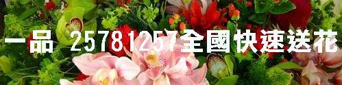 花店一品花苑.網路花店.25286560.玫瑰花束-108朵求婚 金莎 小熊花束.花籃.盆景.會場佈置.包月插花.會員9折